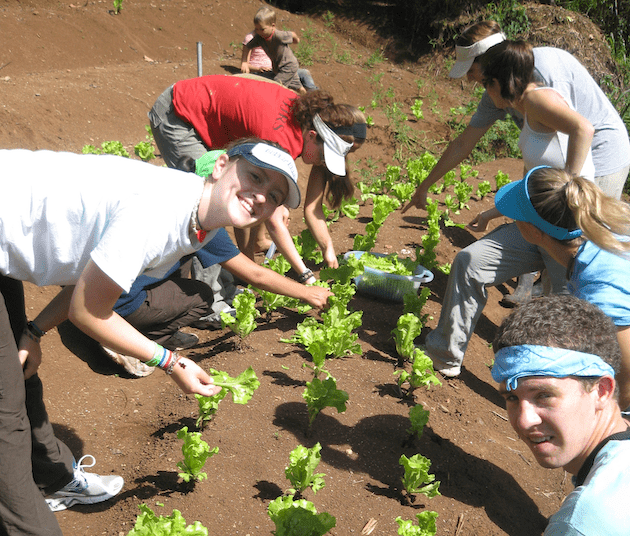 costa-rica-high-school-student-environmental-trip-farming