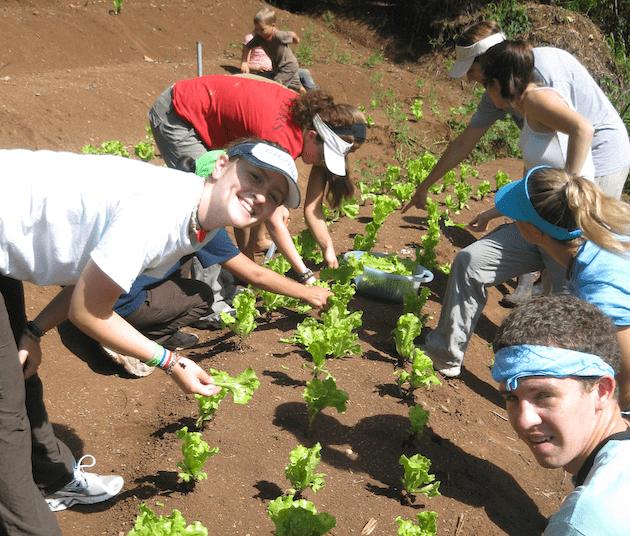costa-rica-high-school-student-environmental-trip-farming